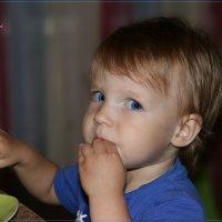 Когда я ем я глух и нем. :: Anatol Livtsov