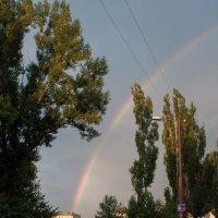 после дождичка, в четверг :: Андрей Литвин