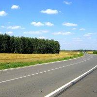Серая лента дороги. :: Борис Митрохин