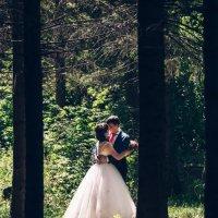 свадебная :: Константин Гусев