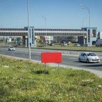 На шоссе :: Aнна Зарубина