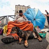 Сиеста в Париже :: Roman Mordashev