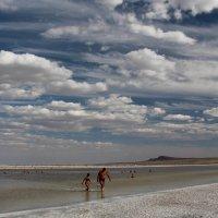 Мёртвое озеро :: Dr. Olver  ( ОлегЪ )