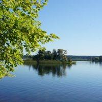Утро на озере Селигер у дер. Заречье :: Елена Павлова (Смолова)