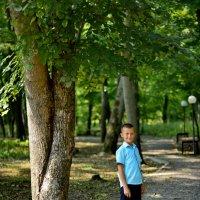 Прогулка в лесу :: Алена Карташова