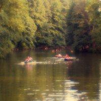 Теплый день на реке :: valeko