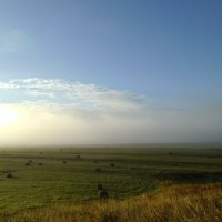 Туманное утро :: Николай Туркин