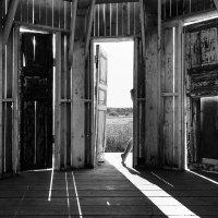 Двери :: Владимир Чернышев