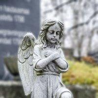 ангел :: golfstrim