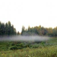 Туман. :: Борис Митрохин