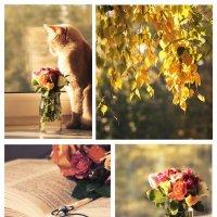 Осень уже пришла... :: Nyusha