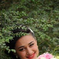 невесты :: shota