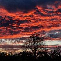 Огненно кучевые облака.... :: Анатолий Клепешнёв