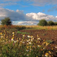 Разноцветная блажь сентября :: Павлова Татьяна Павлова