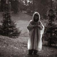 Дождь :: Рома Григорьев