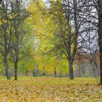 Осень.Парк. :: Александр Атаулин