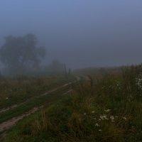 Туман :: Юрий Мезецкий