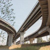 мост :: Александр тарасенко