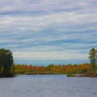 Золотая осень в Сибире :: Николай