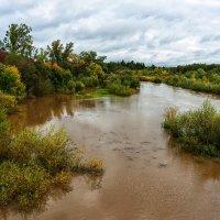Осенние разливы. :: Валерий Молоток