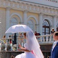 Невеста-Профиль :: Колибри М