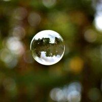 Мыльный пузырь :: Phantom