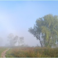 Просто туман. :: Владимир Михайлович Дадочкин