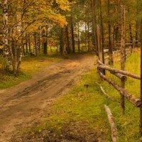 Осень :: Игорь Триер