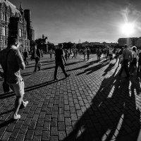 Человек идёт за тенью, а она за ним :: Ирина Данилова