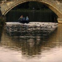 золотой мост :: sv.kaschuk