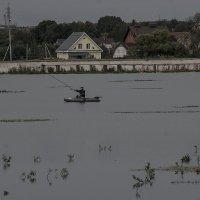 На озере :: Людмила Синицына