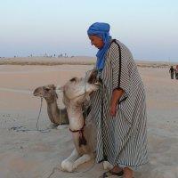 Прогулка по Сахаре :: Мария Стрижкова