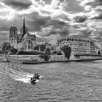 Набережная р.Сена в Париже и собор Нотер-Дам де Пари :: Free