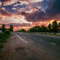 Мертвая дорога :: Алина Гриб