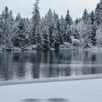 апрельский снегопад :: Elena Wymann