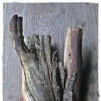 Из жизни дерева :: muh5257