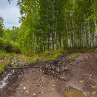 дороги :: Сергей Сол