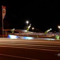 Лыжники - скульптуры из мха. :: Anna Gornostayeva