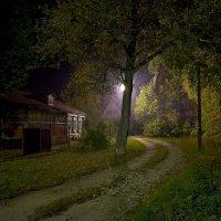 Тихая ночь :: Константин