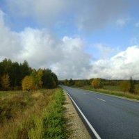 Новая дорога :: Николай Туркин