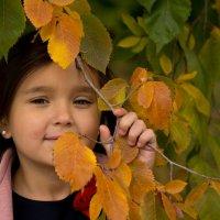Осень это маленькая жизнь :: Оксана Сафонова