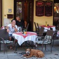 Уличное кафе :: Евгений Кривошеев