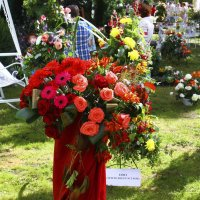 выставка цветов :: сергей вдовин
