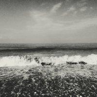 Черное море :: Olga Photo