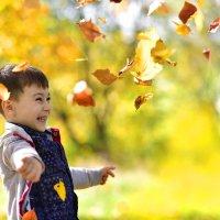 золотая осень :: Наталья Могильникова