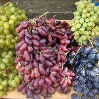 Виноградное ассорти :: Нина Корешкова