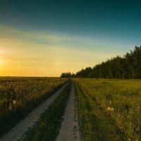 закат :: александр лебеденко