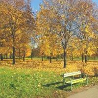 Осенний этюд №12 :: Александр Атаулин