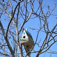 Радужный домик для птичек )))) :: Наталья Мельникова