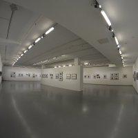 выставка :: Дарья Орехова